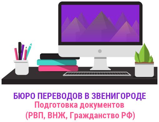 Комплексные услуги по подготовке документов для получения РВП, ВНЖ и гражданства РФ